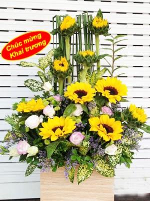 Hộp hoa hướng dương tặng khai trương.